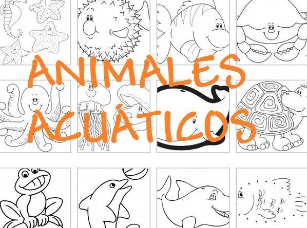 Dibujos gratis para colorear y pintar de animales acuáticos: peces ...