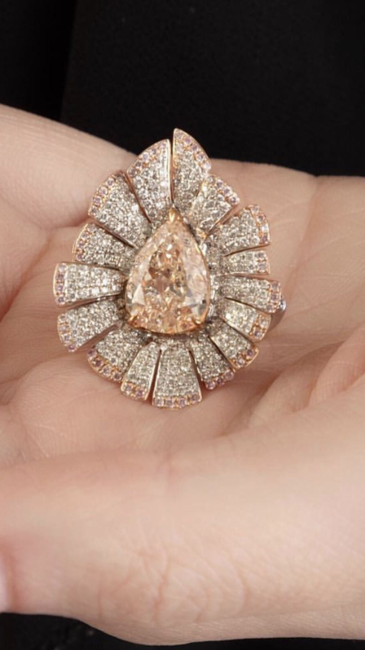 3ffd67e99 Jewelry Case, Jewelry Rings, Fine Jewelry, Ring Earrings, Ring Bracelet,  Colored