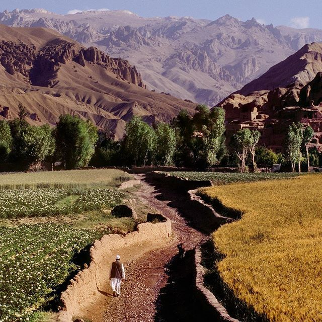 Photo by @stevemccurryofficial // A farmer walks through his fields in Bamiyan Afghanistan which is in the Central Highlands region between the high mountains of the Hindu Kush and the Koh-i-Baba mountain ranges. Bamiyan was on the Silk Route which caravans traveled to take goods from China to points west.  #Afghanistan #Bamiyan #HinduKush by natgeo