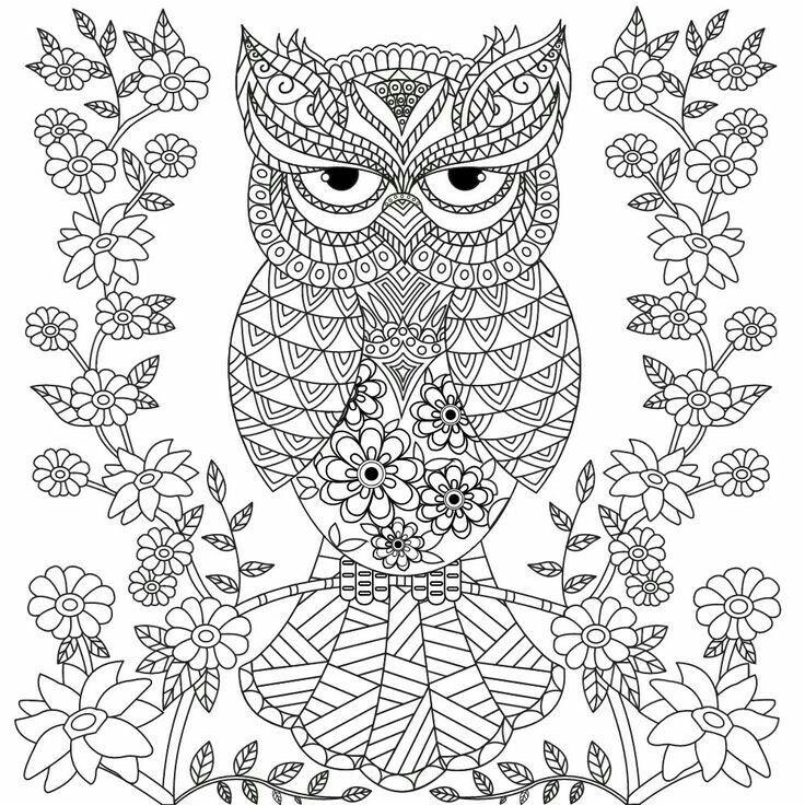 Pin De Josiane Em Animais Para Colorir Coruja Desenho Animais