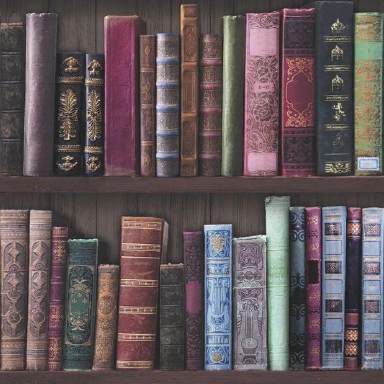 Bookshelf 101689 By Superfresco From Graham Brown Book Wallpaper Wallpaper Bookcase Wallpaper Shelves