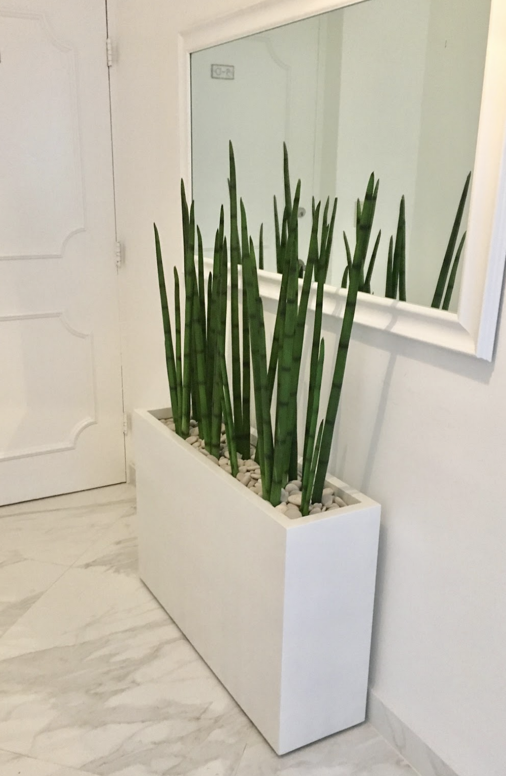 Milano Narrow Rectangular Planter Jay Scotts Collection House Plants Decor Plant Decor Indoor Rectangular Planters