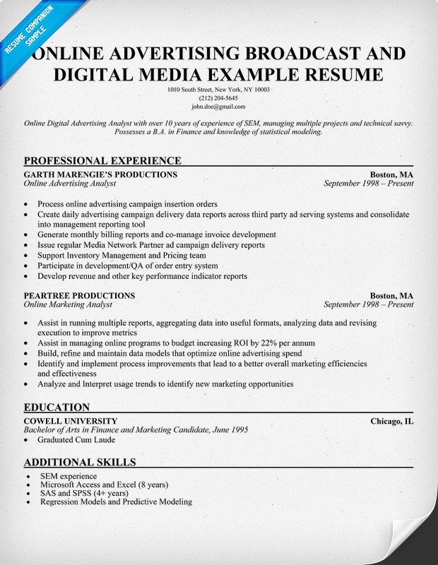 Online Advertising Broadcast Digital Media Resume