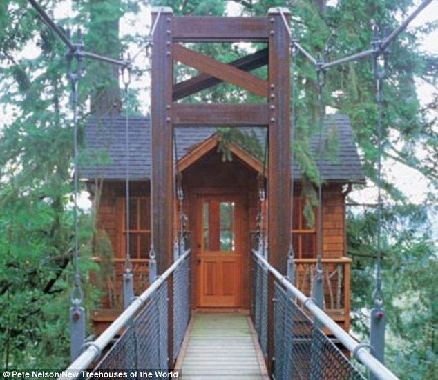 Ordinary Building A House In Washington State #3: Now THATu0027S A Tree House! Startling Pictures Of Homes In The Canopies As  Enthusiasts Take Childhood Passion To New Heights