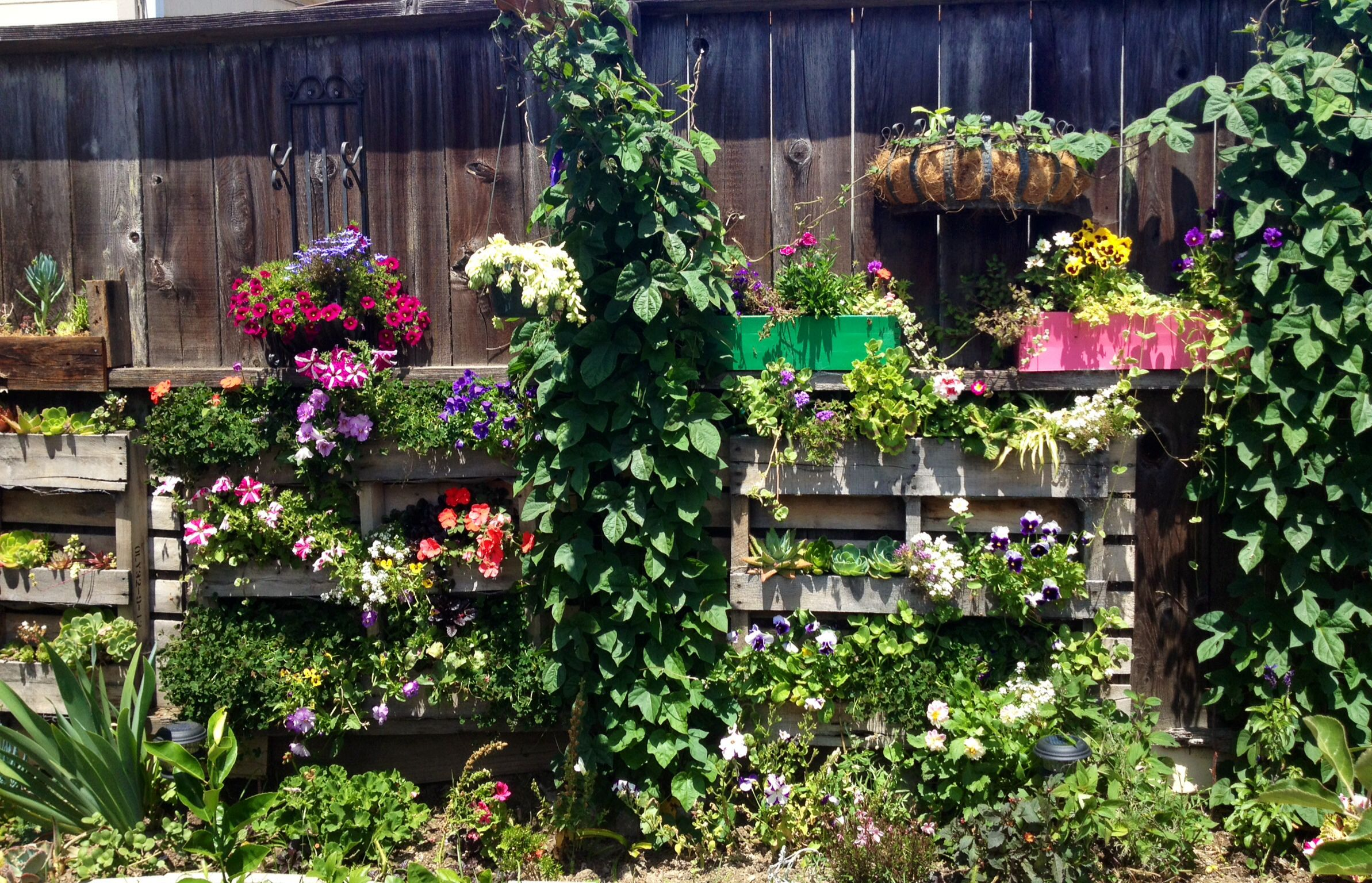 Update Susan S Garden Flowers Pallet Gardening Arrangement