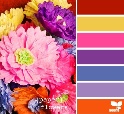 Color Wander | Flowers, Find color and Design seeds