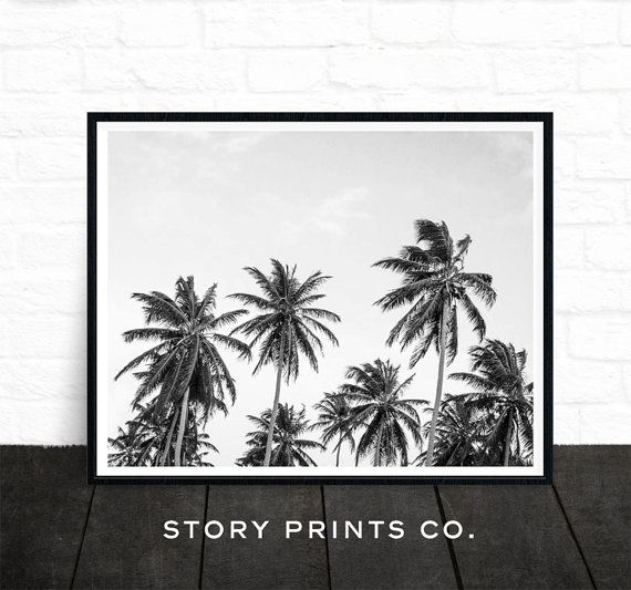 Palm print black and white photo palm tree art by storyprintsco