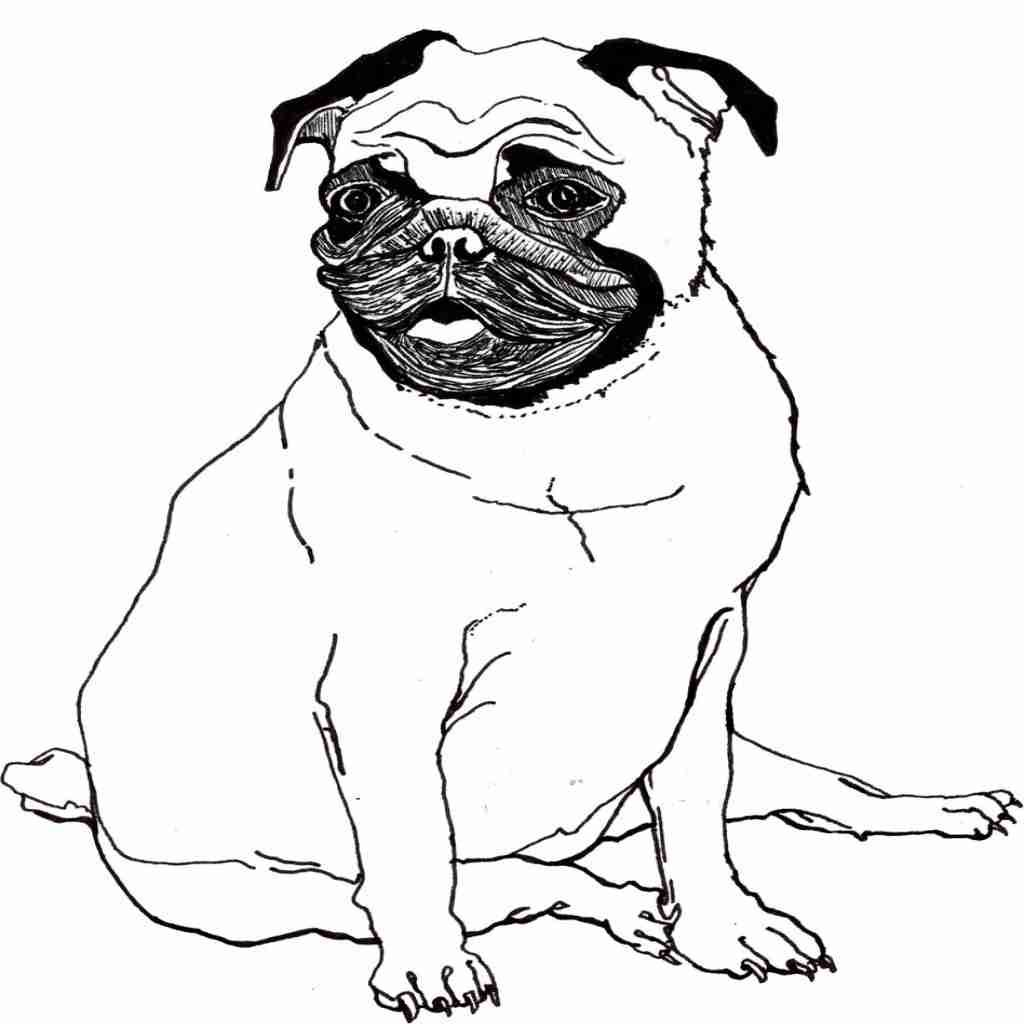Printable Dog Coloring Pages Ideas For Kids  Dog drawing for kids