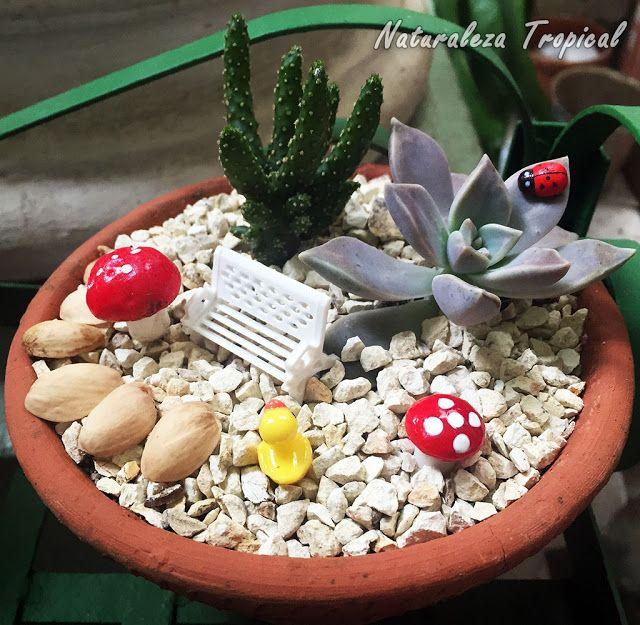 mariquita artificial sobre planta suculenta banco en miniatura y algunos hongos