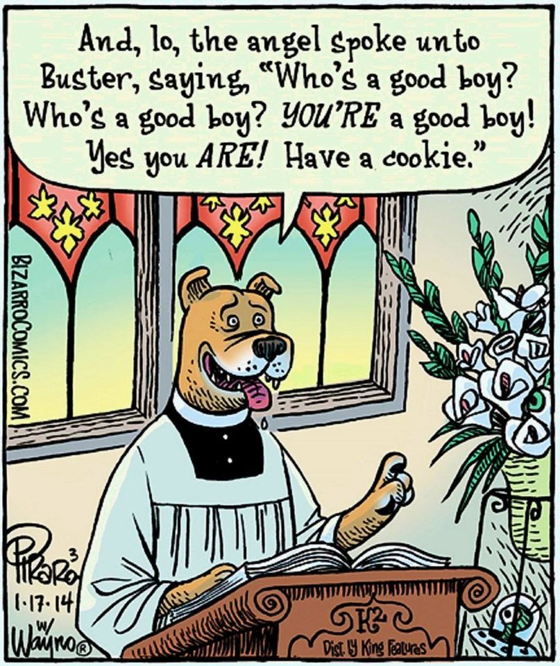 Have a cookie. from Episcopal Church Memes | For the love ...