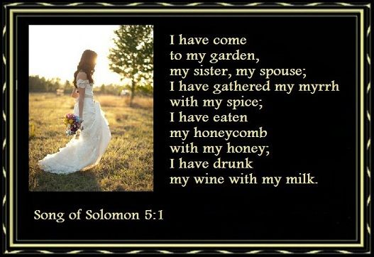 Song of Solomon 5:1