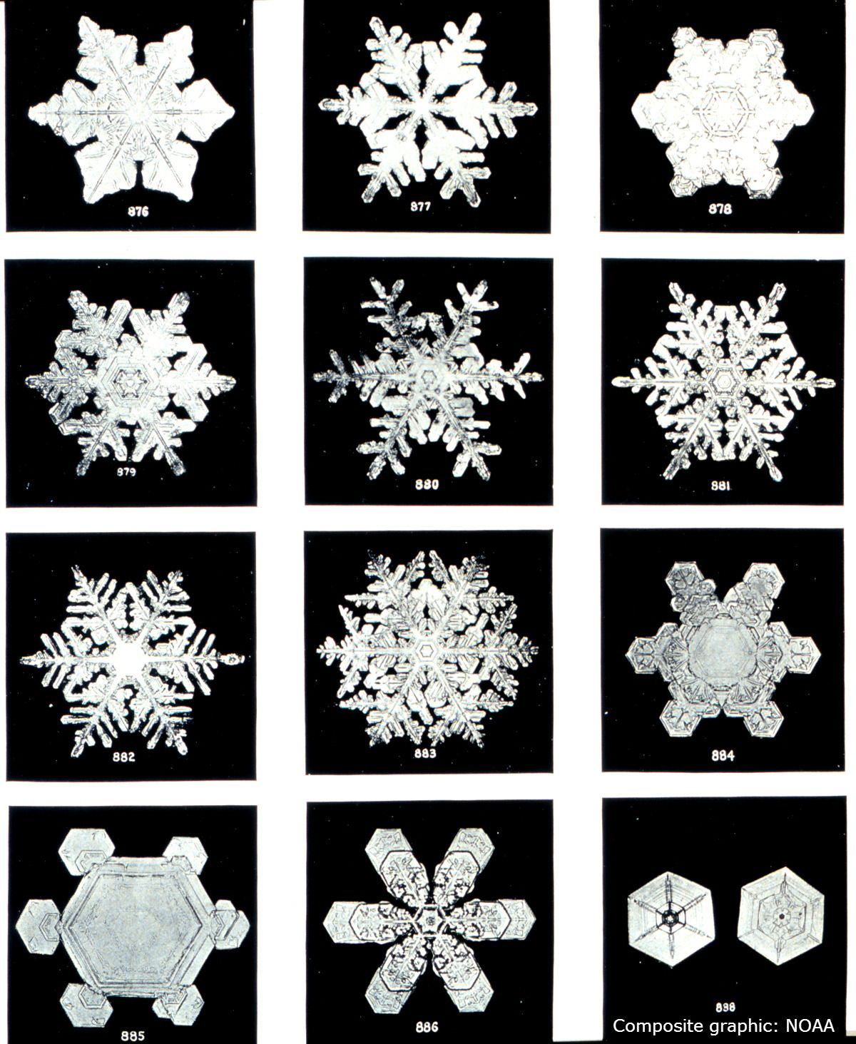 how do snowflakes form get the science behind snow composite