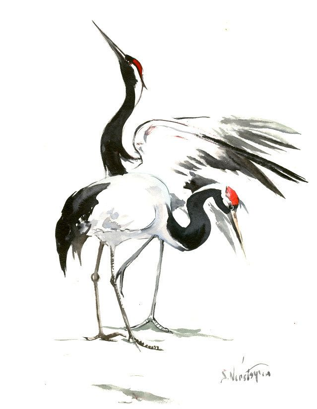 Japanese Crane Original Watercolor Painting 14 X 11 In Black