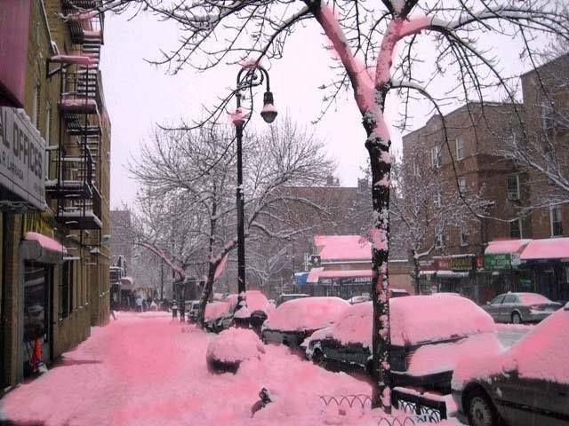 """CAE NIEVE ROSA EN ESTADOS UNIDOS Como un algodón de azúcar se veían las calles en Colorado, Estados Unidos, luego de que cayera sobre ellas nieve color rosa. Este fenómeno es 100 por ciento natural y es provocado por la germinación de algas llamadas """"Chlamydomonas Bivalis"""" que tienen pigmentos rojizos y tiñen la nieve. Este fenómeno también ocurre en Canadá y Rusia."""