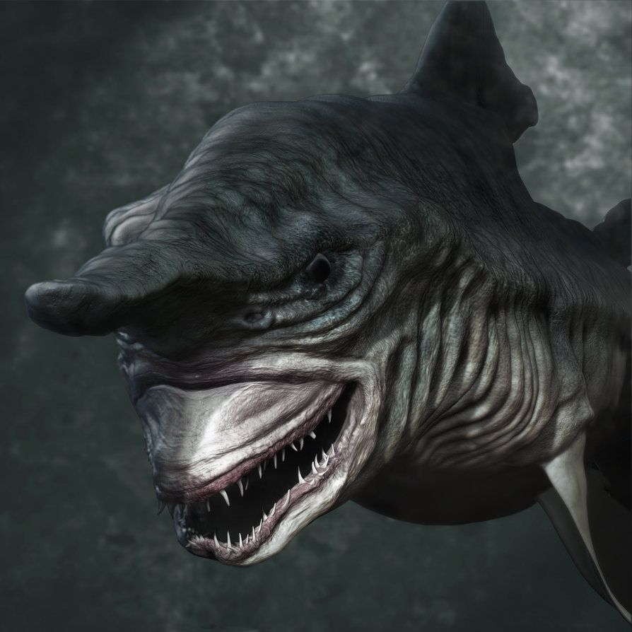 Goblin Shark | When people say they're scared of sharks I was like ...