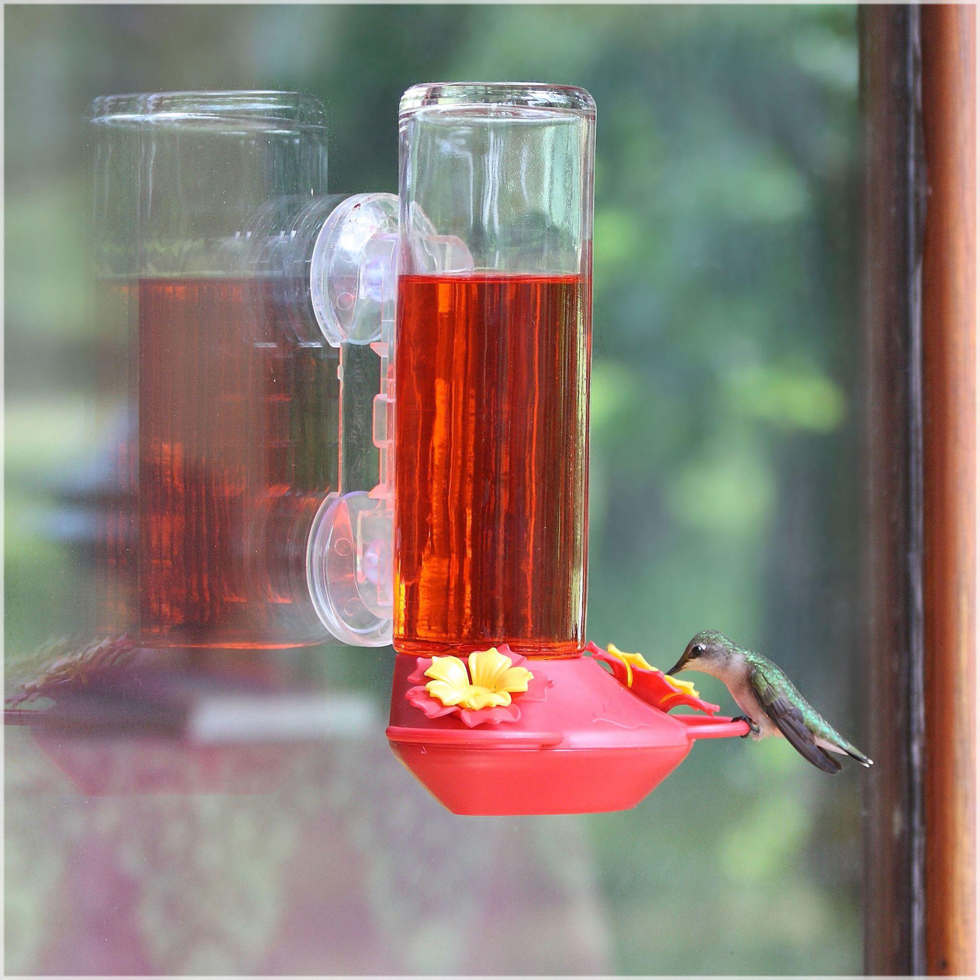 Window Mounted Hummingbird Feeder Humming Bird Feeders Window Bird Feeder Glass Hummingbird Feeders