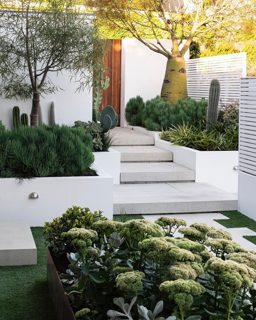 Pin On Landscape Modern backyard landscaping ideas australia