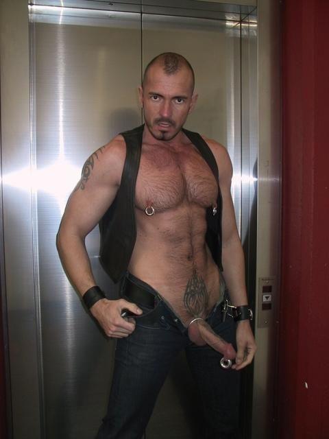 Hot guys with prince albert piercing galleries 516