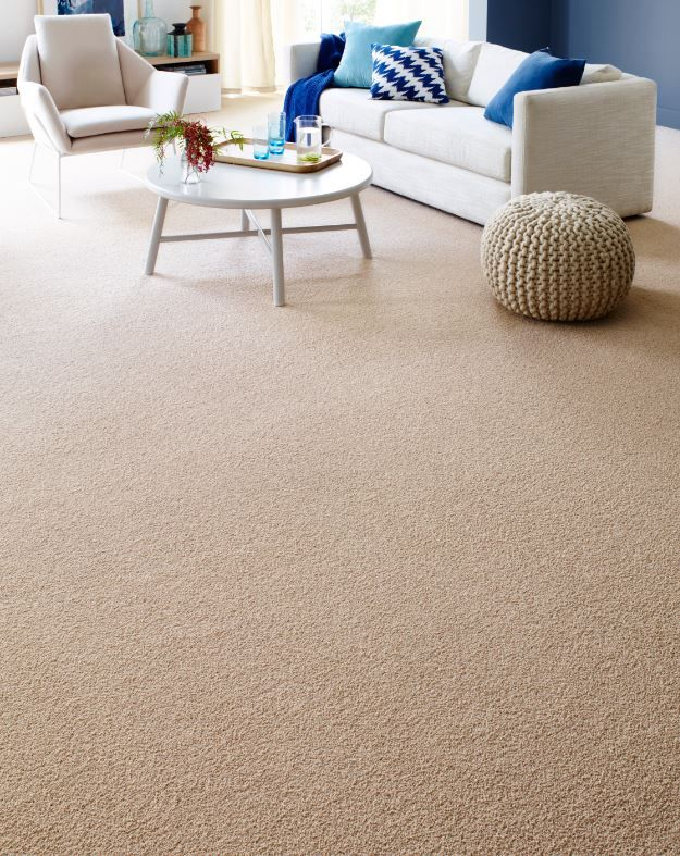 Newport Carpet cremelatte performancecollection Pop in