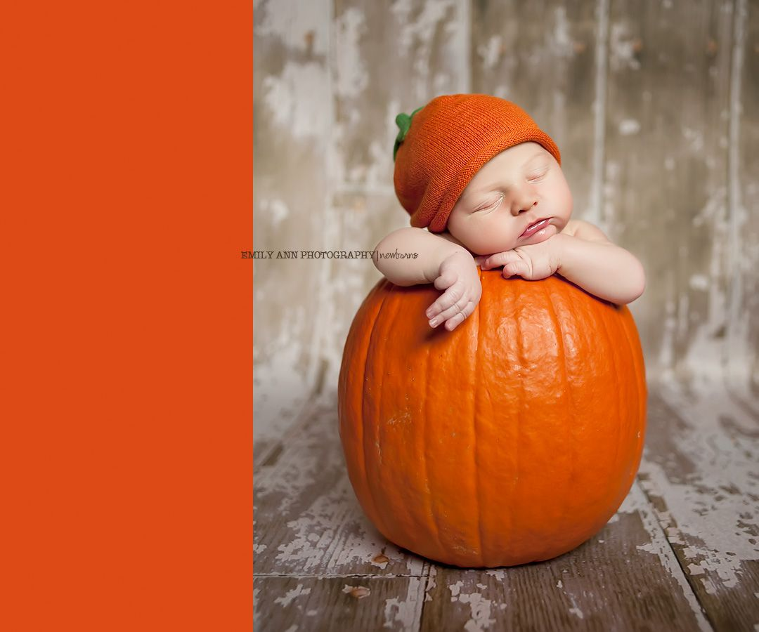 25 babies in pumpkins | babies, photography and baby photos