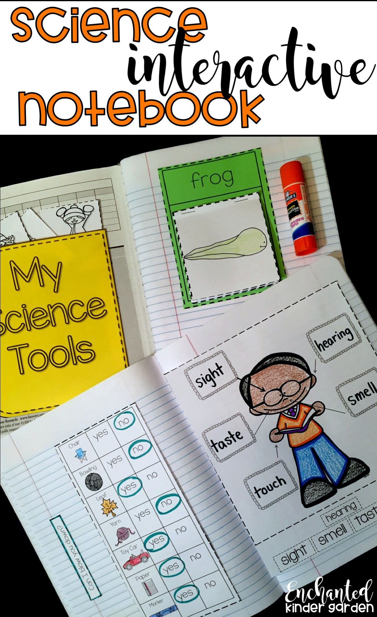 Science Interactive Notebook Kindergarten Science First