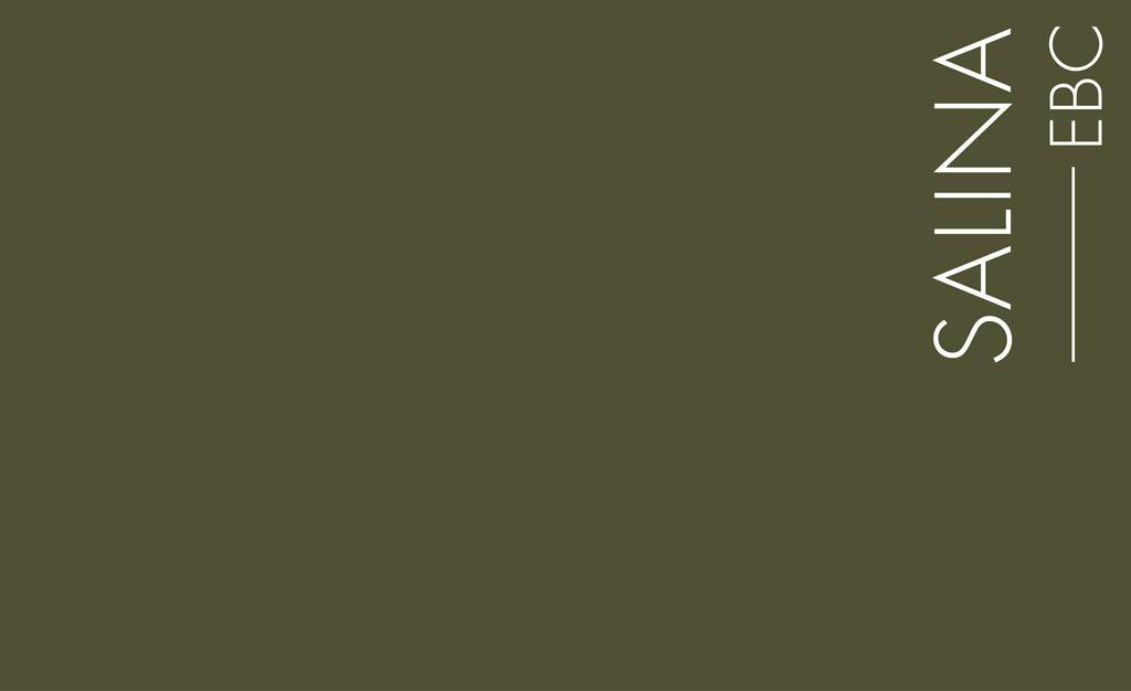 Enduit Beton Colore Mercadier Couleur Salina Un Vert Kaki Fonce Mais Lumineux Vert Kaki Couleur Vert Kaki Beton Colore