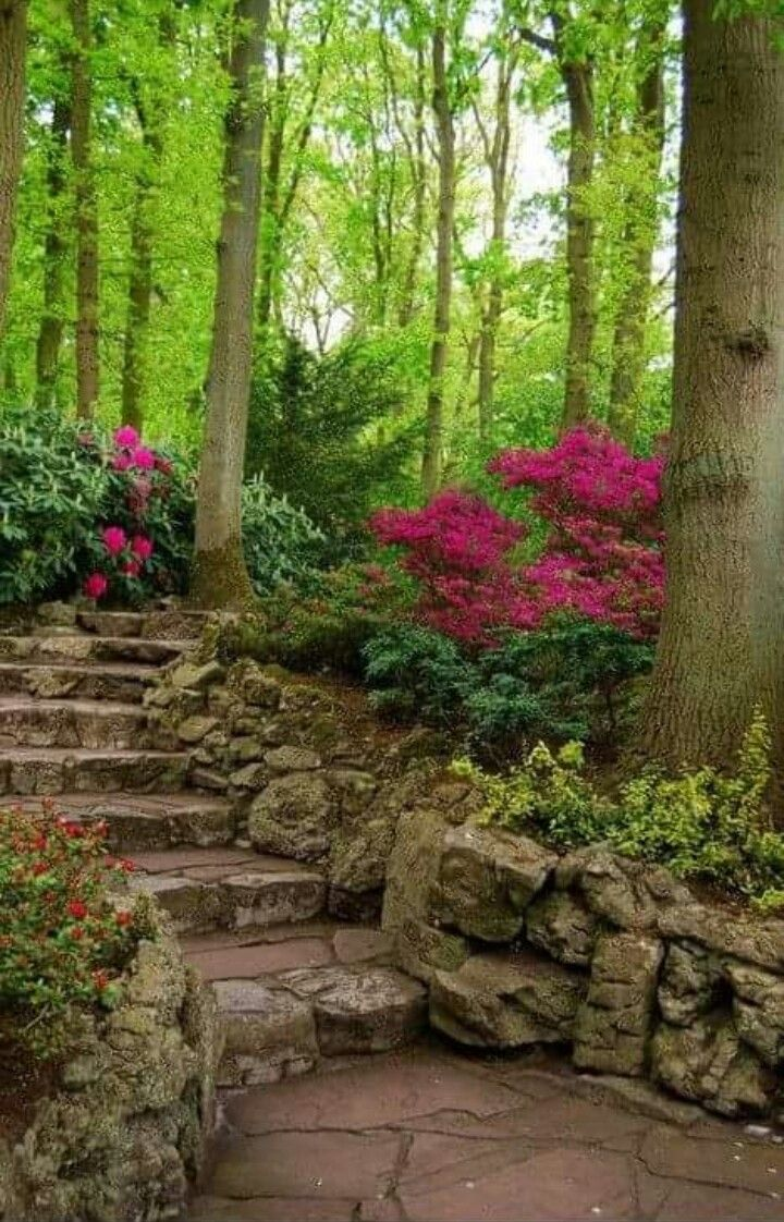 Pin by Claudia Paucar on Patio | Pinterest | Gardens, Landscaping ...