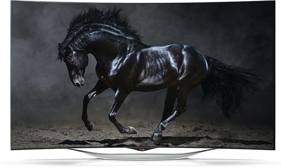 Best buylabor day saleoled tv horse photographylow key photographyblack white