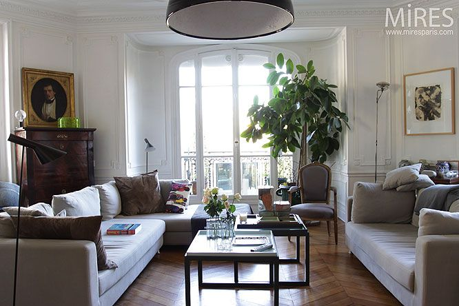 Photo decoration d coration appartement haussmannien for Decoration interieur classique