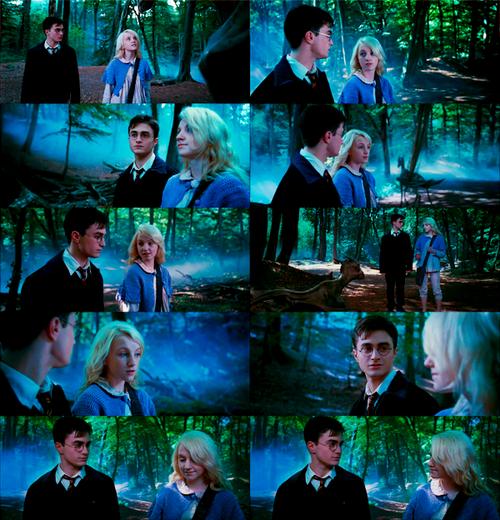 Harry Potter & Luna Lovegood