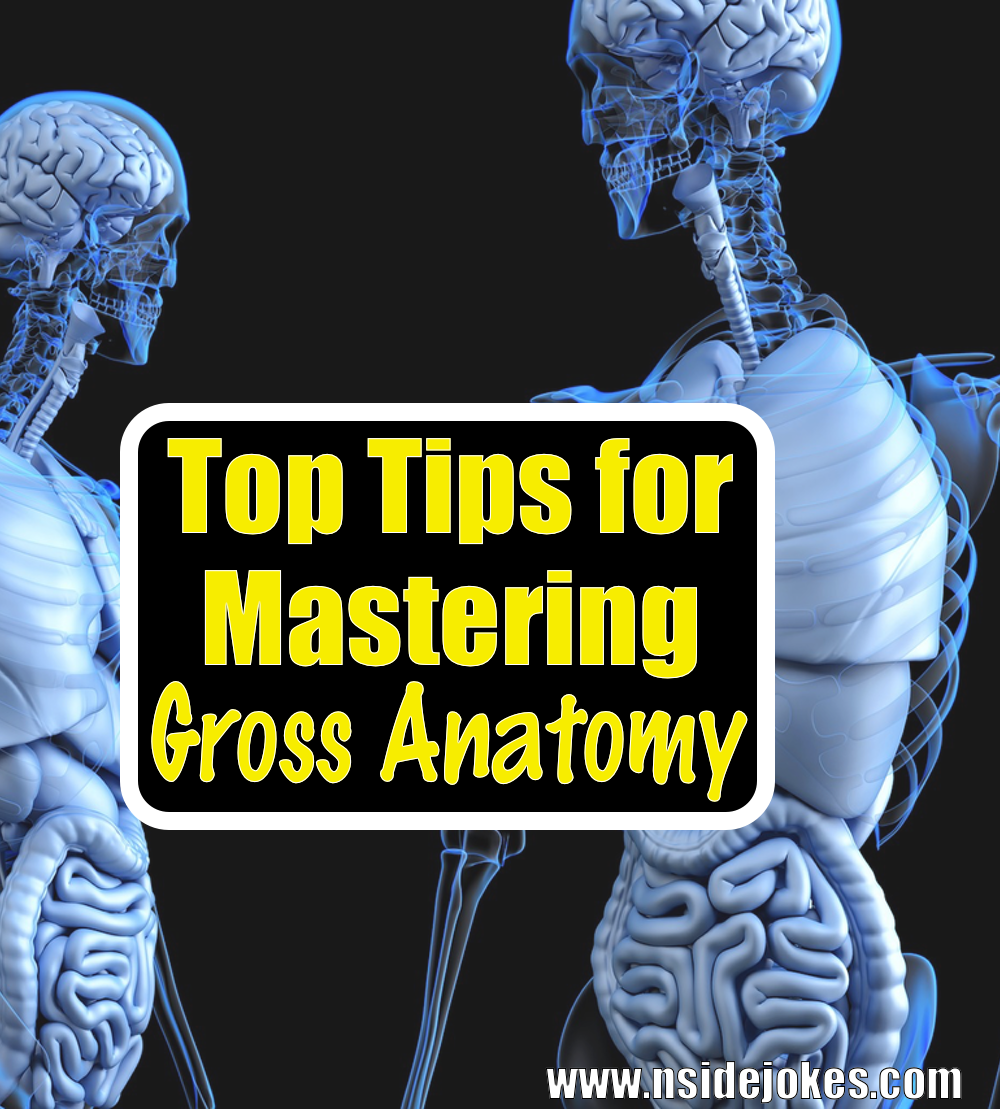 Helpful study tips and tricks for medical students. Master the ...