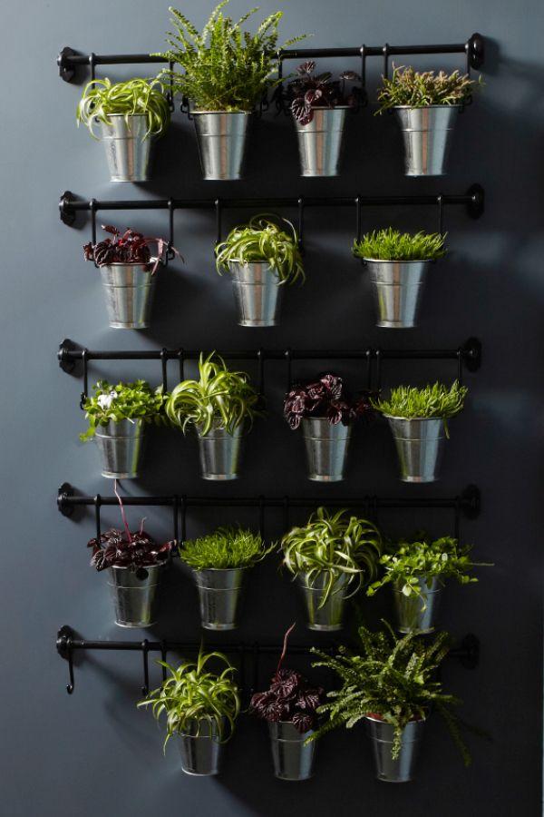 australia diy herb garden indoor vegetable gardening on indoor herb garden diy wall kitchens id=70395