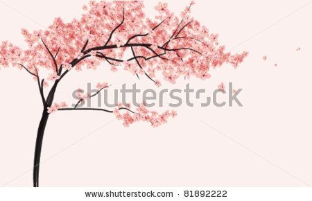 cherry blossom tree with flowers vector illustration stock vector