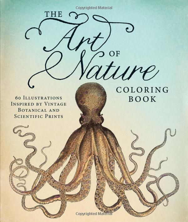 Buy A Discounted Paperback Of The Art Nature Coloring Book Online From Australias