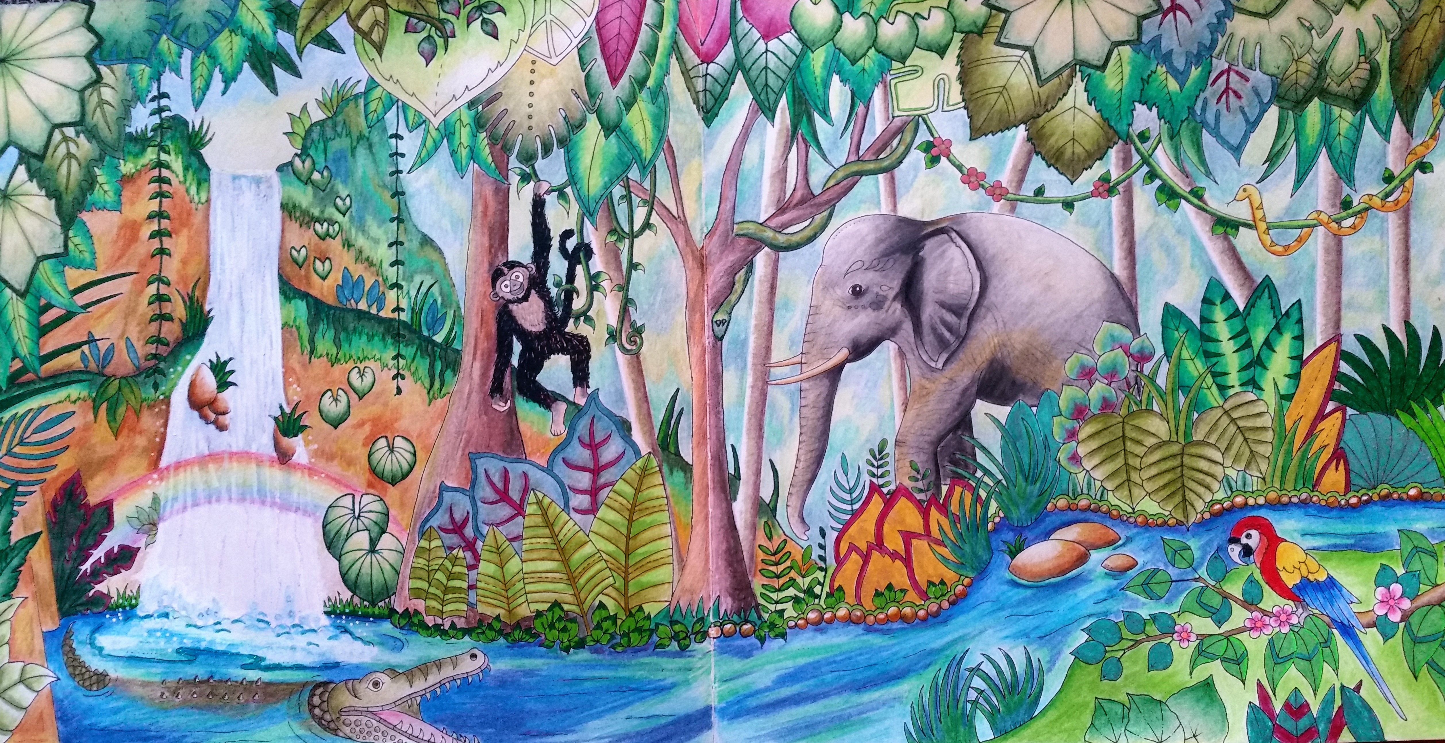 Elephant And Waterfall From Magical Jungle Coloured By Bronwyn Dargaville Johanna Basford Coloring Basford Coloring Johanna Basford Coloring Book