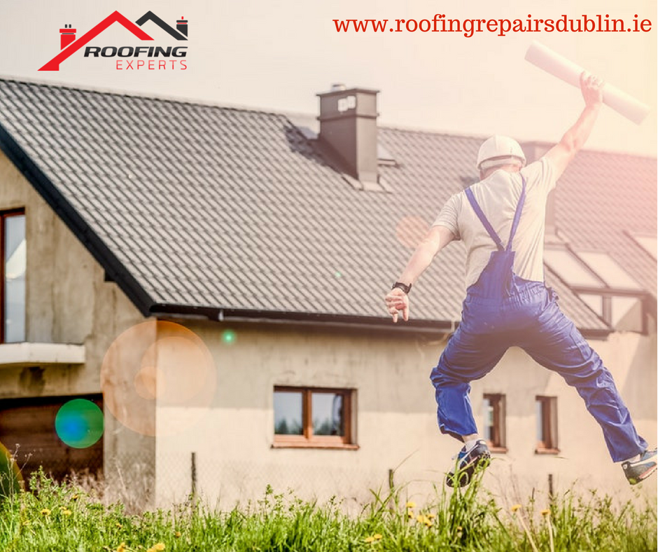 Roofing Repairs Dublin Is A Well Established Roofing Company In Dublin We Offering Everyone Who Is Looking For Roof R Home Buying Tips Real Estate How To Plan