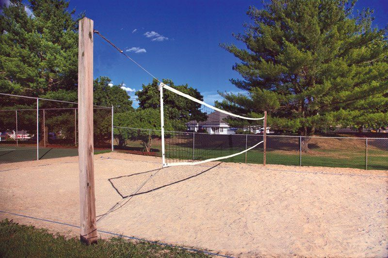 Our sand volleyball court in 2019 | Sand volleyball court ...