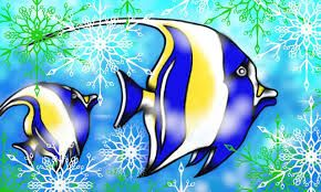 Resultado de imagen para imagenes de peces
