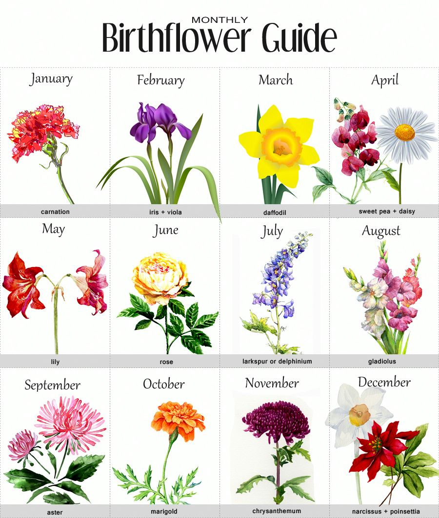 100 Small Tattoo Ideas For Your First Ink Birth Flowers Birth Month Flowers Birth Flower Tattoos