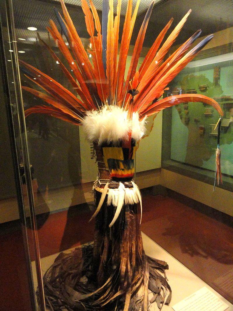Headdress, feathers, Wayana - Arte plumária dos índios brasileiros – Wikipédia, a enciclopédia livre