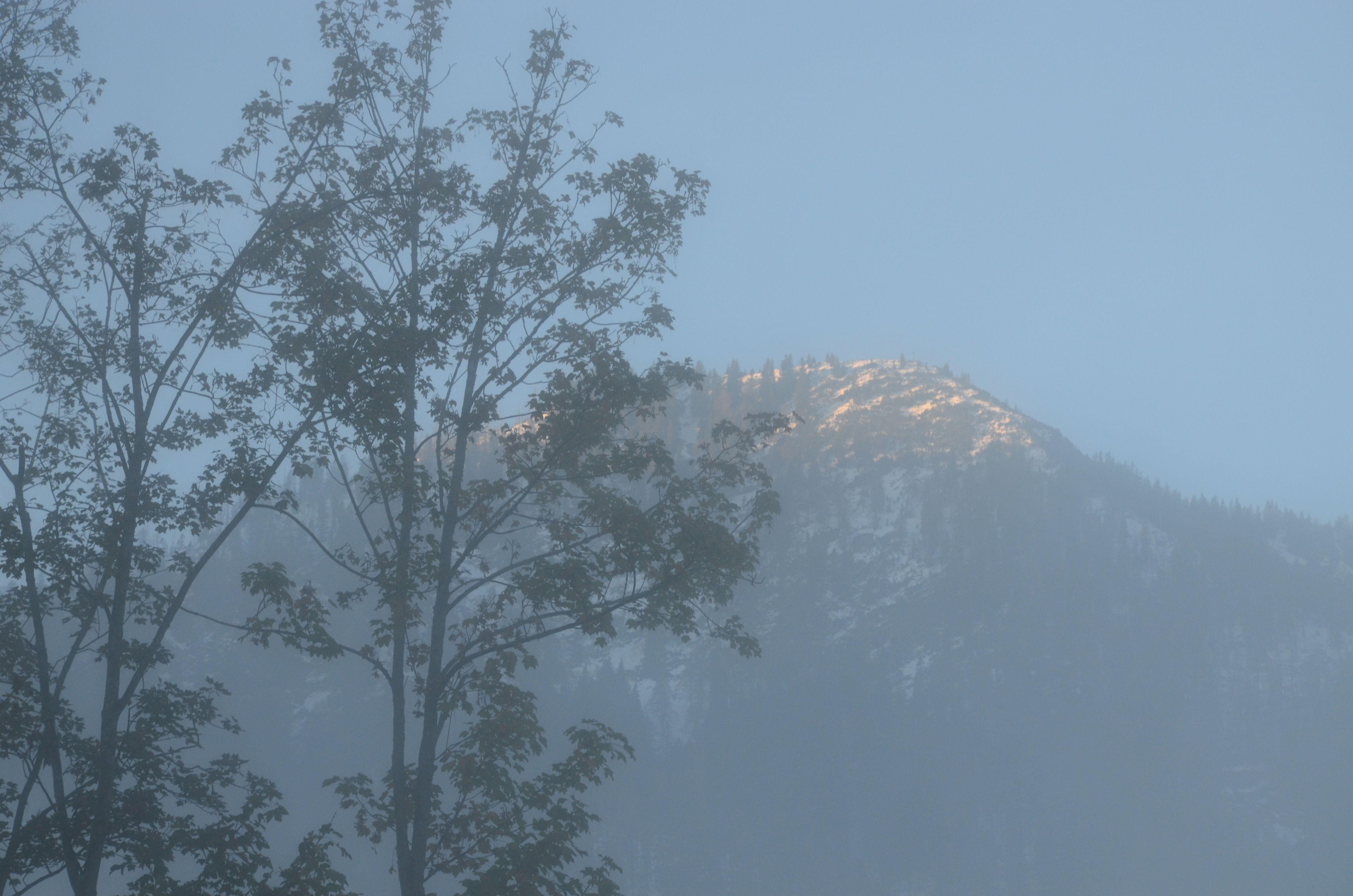Herrlich - oben leuchtet schon der blaue Himmel über den Bergen und im Tal hängt der Morgen #Nebel an einem schönen Herbsttag im November