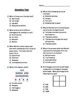 mendelian genetics test answers