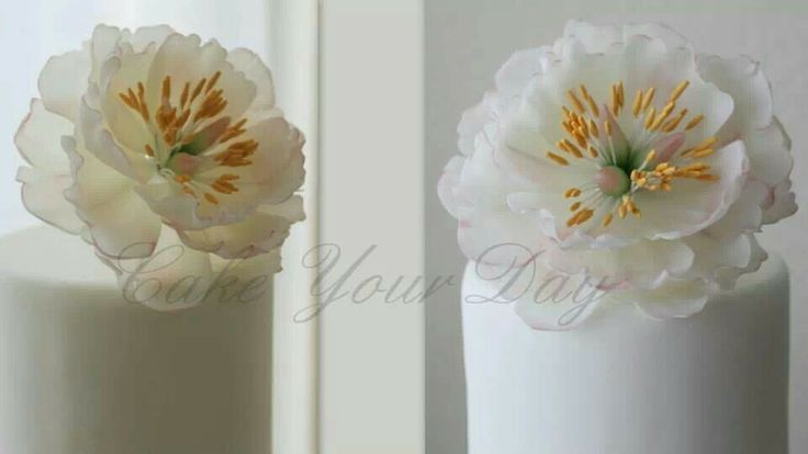 Wafer Paper Peony By Cake Your Day Lots Of Wafer Paper Flower