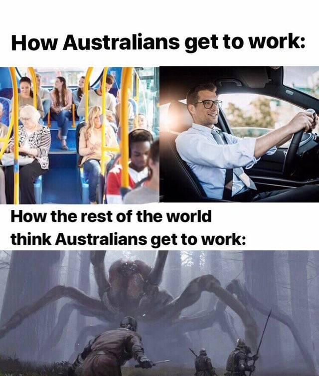 Reddit Memes Really Funny Memes Reddit Memes Funny Memes