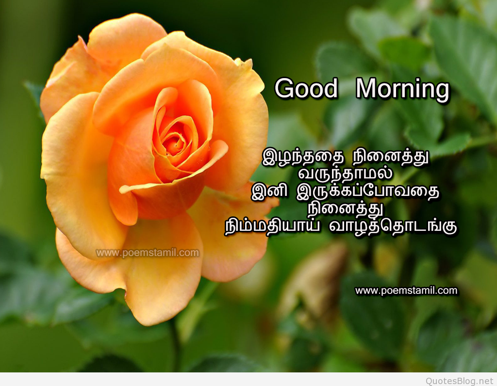 Tamil Good Morning Kavithai Images Wishes And Messages Good Morning Wishes Good Morning Wishes Love Good Wishes Quotes