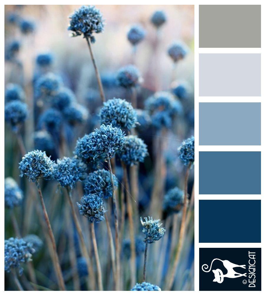 Farbkombinationen Blau Grau: Blue Pompom: Blue, Grey, Steel