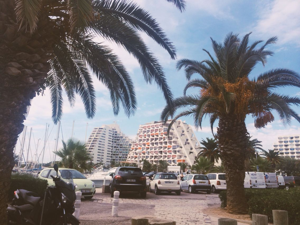 Travel South Of France Cote D Azur La Grande Motte Nice Cannes Summer Beach Palm Trees With Images France Travel Travel Around The Worlds