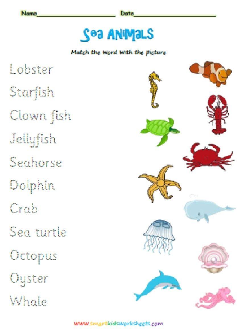 Animals Smart Kids Worksheets Free Printable Worksheets Worksheets For Kids Free Printable Worksheets Worksheets Free [ 1167 x 837 Pixel ]