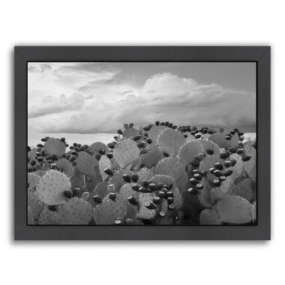 Americanflat Prickly Pear Tuna #2 by Murray Bolesta Framed Photographic Print in Gray Size: