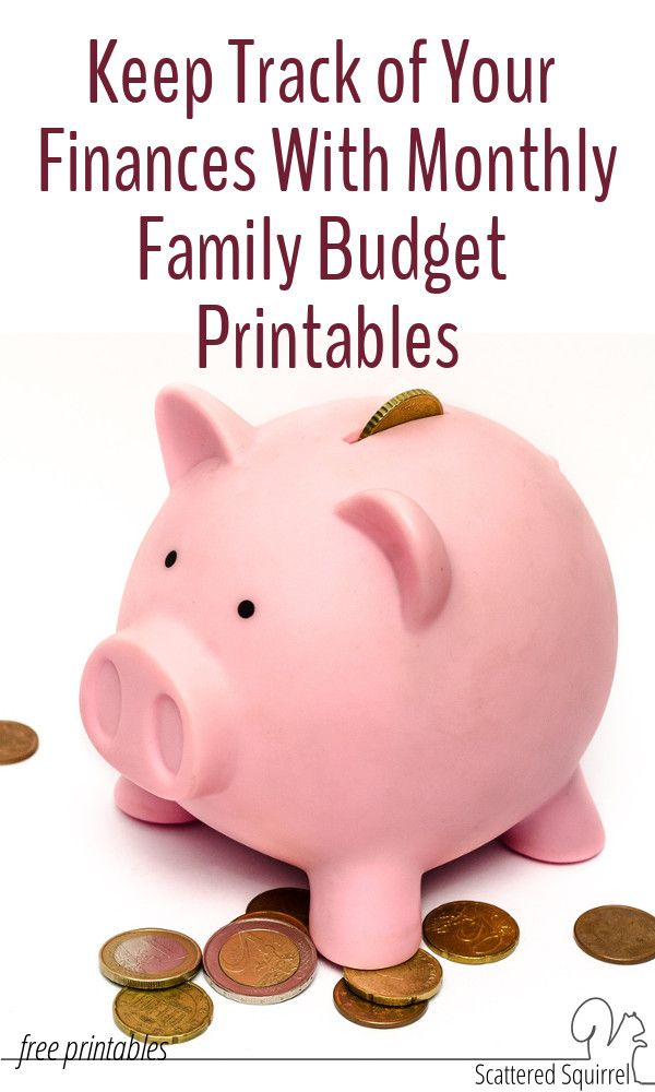 Monthly Family Budget Printables - family budget project
